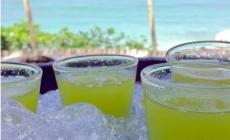 FLORIDE, LE 5 MAI 2021 – BONNES CÉLÉBRATIONS DU CINCO DE MAYO ! / DÉCLARATION DU GOUVERNEUR