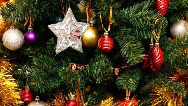Où acheter et  recycler son arbre de Noël