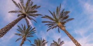 LE TOURISME CANADADIEN  AUGMENTE EN FLORIDE