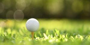 Bon retour sur nos terrains de golf de Floride !