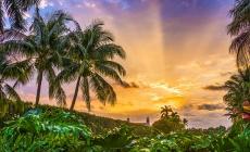 La Floride et le cannabis…