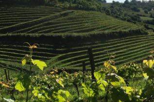 De Bordeaux au Pays Basque