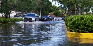 26 MAI 2020 : LA FLORIDE PERTURBÉE
